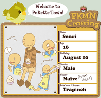 PKMN-Crossing Senri by scilk