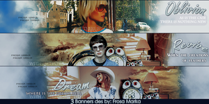 3 Banners by frosa-marka