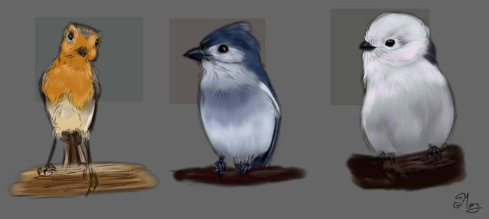 birds practice :) 2 by mary3m
