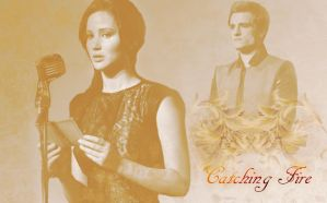 Catching Fire by SellySmilerSwan