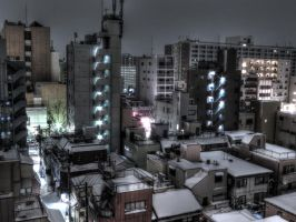 Tokyo Snow HDR by L-Spiro