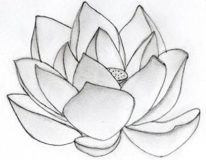 Tattoos Pictures With Free Flower Tattoos Specially Lotus Tribal Tattoo Designs Art Photo 8