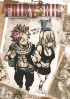 What if..? NaLu Doujinshi Cover by zippi44