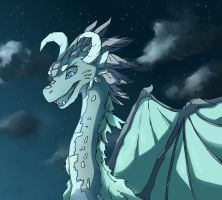 Dragon 1 by finmeen