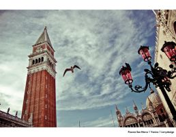 Piazza San Marco at Venice by levydesign