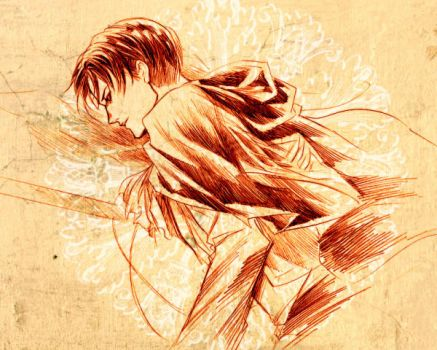 Levi by Ecthelian