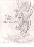 Shadow the ultimate re-size by shadowthelostone