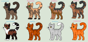 Warrior Cats .:Refs 1:. by TinyWolfy