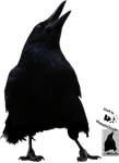 Cut-out stock PNG 76 - a crow claiming by Momotte2stocks