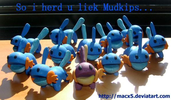 So I herd u liek Clay Mudkipz by HeyLookASign