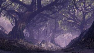Blade and Soul | Mystic forest by AnieMarch