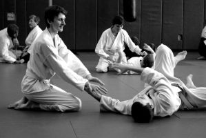 Aikido Seminar February 2014, 7 by bebelee