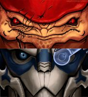Mass Effect - Wrex and Garrus. by Sephirona