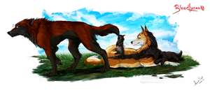 .: Wolfpack :. by Amand4