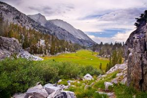 Meadow Below Treasure Lakes by shubat