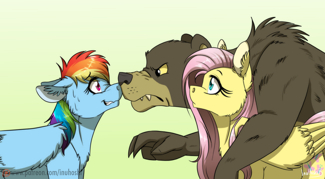 Don't Mess with a Bear's Owner by InuHoshi-to-DarkPen