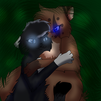 Do you think Starclan see us here? by Eeveestarluver