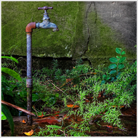 Old Faucet by guille1701