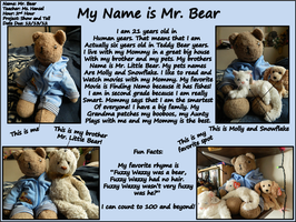 Mr. Bear's Show and Tell Poster by DOC-Ash1391