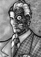Two Face by BigChrisGallery