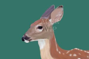 Fawn WIP by TEFacer
