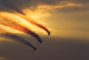 Flying in the sunset by GorALexeY
