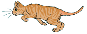ThunderClan - Rosetail by WildpathOfShadowClan