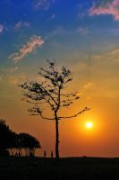 bandengan beach by nooreva