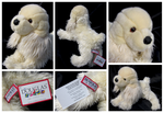 Douglas Medium Floppy Dogs - Curly Cocker Spaniel by The-Toy-Chest