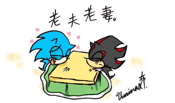 Sonic and Shadow by BuNInA