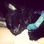 Sleeping JiJi by GothianaVampet