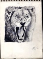 Lion(reupload) by thiphobia