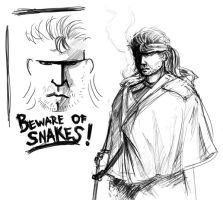 Beware of Snakes by Johanz