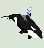Camy Pixel PC for Camy Orca by Oreo-The-Orca12
