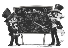 Sonic Dissected by SupaCrikeyDave