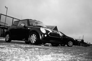 Mini And Astra 4 blackNwhite by Fraawgz