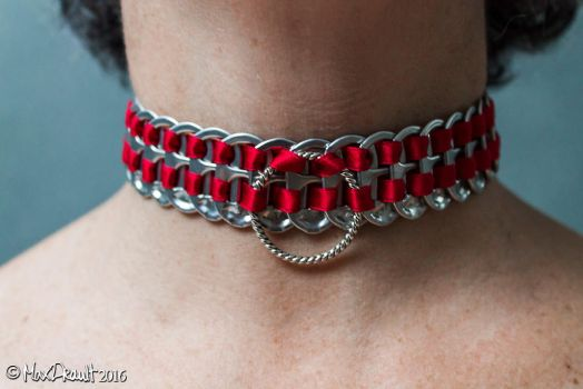 Home-Made Red Collar by MaxDrault