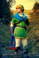Link - Hyrule Warriors Cosplay by Laovaan