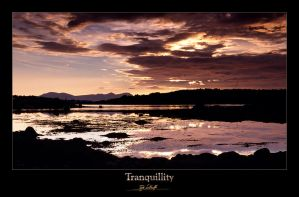 Tranquillity by Sokklei