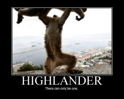 HIGHLANDER. by Medxcal
