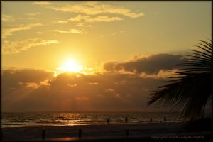 Dinner in paradise... by LadyAliceofOz