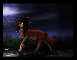 Have You Ever Seen the Rain? by ScottishRedWolf