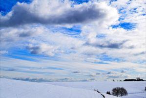 Winter Sky II by Aenea-Jones