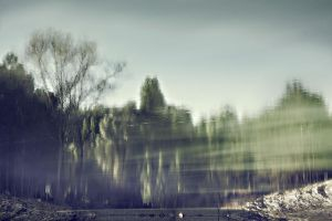 deep forest reflects on water by PortraitOfaLife