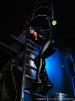 The real Catwoman by CheekyPhotography