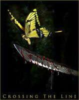 Crossing the Line : BUTTERFLY by cristiantownsend