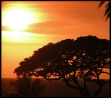 Another Hawaiian Sunset by dolphingirl0113