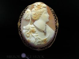 Victorian Cameo Pin by mirrorimagestock