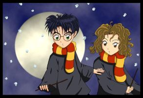 Harry and Hermione by Klamsi
