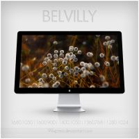 BELVILLY by 99xpress